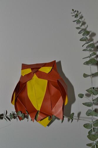 Buho / Owl (Design by Román Díaz)