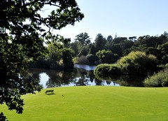 Royal Botanic Gardens Melbourne - Photography and Digital Art by Vladimir D Ivanovic (PhotoArt Gallery VIDIM) Tags: saved city morning flowers trees sky people sun white green art nature public water beautiful grass leaves birds yellow gardens fauna digital buildings reflections garden fun botanical photography daylight flora nikon moments colours open treasure oz unique memories lakes royal parks free australia melbourne images shades victoria flags tourists professional international views passion environment species layers vlade paths generations visitors loved rare commonwealth tranquil reserves rbg protected unspoiled liveable uncommissioned photoartvlade