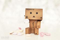 82/365 : MWAH <3 (Lisa-Mari) Tags: pink white love hearts kiss sitting candy heart bokeh sweets mwah lovehearts loveheart danbo canonef50mmf14usm project365 bokehwhores