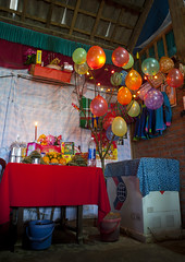 Tet tree - Vietnam (Eric Lafforgue) Tags: decorations party vertical balloons table colorful asia candles interior nopeople vietnam viet newyearseve asie colourful tet peachtree sapa colorphoto kumquat vietname  wietnam northernvietnam reddzao daopeople vietnameselunarnewyear    vietnam7349 tetday