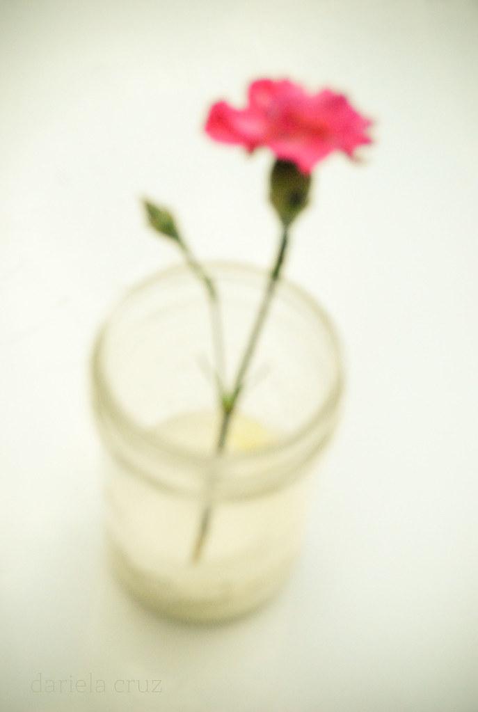 Flor para ella