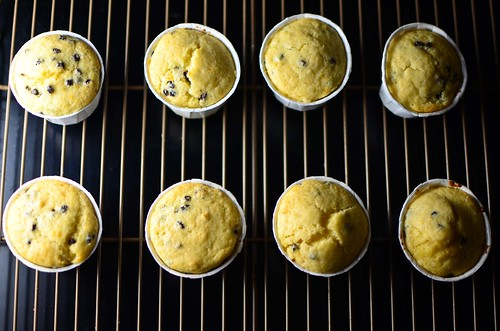 citrus currant sunshine muffins