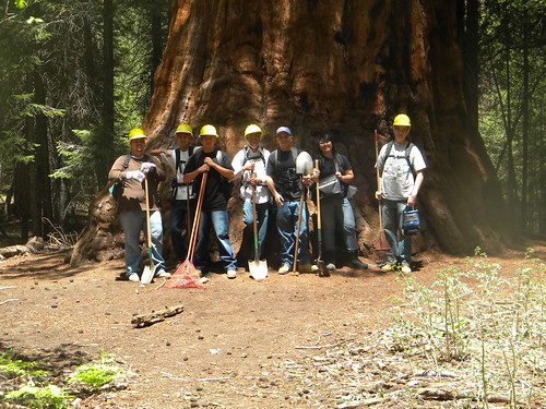 Members of the Central California Consortium stand in front of a massive tree, part of the natural resources they help sustain. (Photo by Central California Consortium)