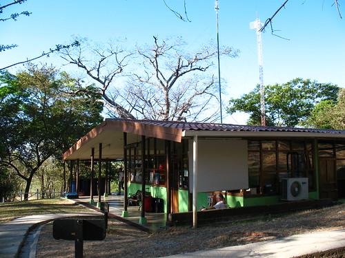OTS Palo Verde field station
