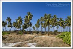 St Mary's_2011_042 (ajayclicks) Tags: sea india coast karnataka udipi stmarysisland tokina1224f4 canoneos7d ajayclicks ajaygarg counarbasalticlava