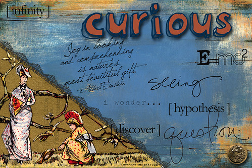 curious | AJC {February 2011} The Adjective Project