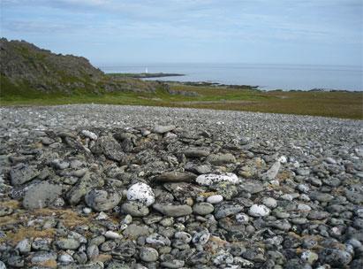Samisk urgrav på Omgang. Fyret og den gamle fiskeværslokaliteten skimtes i bakgrunnen.