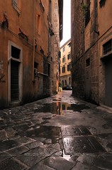Narrow street of Pisa (astikhin) Tags: road street old city travel roof shadow sky italy house reflection building window water vertical wall architecture buildings dark walking tile outdoors island photography ancient alley streetlight colorful day arch apartment floor famous culture structure historic pisa transportation dome denim passage decor past vacations narrow appliance distant southerneurope tiledfloor urbanscene colorimage urbanroad buildingexterior mediterraneancountries buildingstructure lightingequipment residentialdistrict wayforward