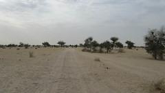 West Africa-2532