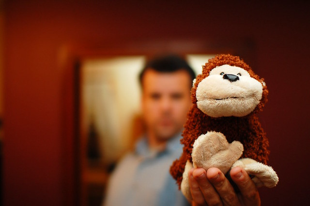 Everybody's Got Something To Hide Except Me And My Monkey