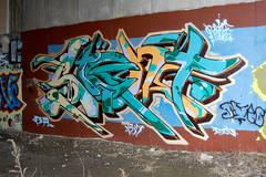 DSC_0108 v2 (collations) Tags: toronto ontario graffiti documentary ba sight bsm railpath sightone westtorontorailpath establishingshots graffitiinsitu contextshots