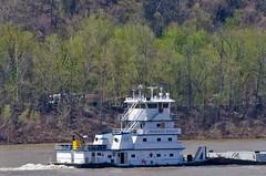 McKENZIE WAXLER (Joe Schneid) Tags: kentucky transportation louisville towboat inlandwaterway inlandwaterways seacor americanwaterways mckenziewaxler ohiorivermile619 scfliquids scfwaxlermarine