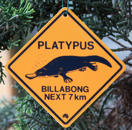 Platypus Road Sign