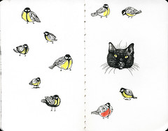 fat cat wants fat birds (fake glue) Tags: moleskine drawings liner colorpencils
