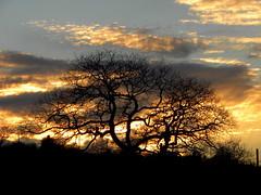 Tramonto d'inverno (finieddu) Tags: sardegna sunshine tramonto inverno ploaghe sardegnadeberlusconizzata