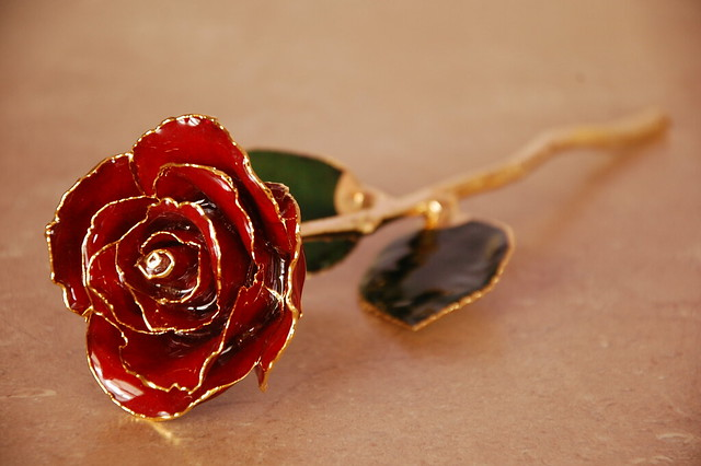 red gold dipped rose