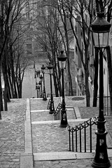 Down In The Seine (Beanotown Photography) Tags: trees blackandwhite paris stairs lamps cobbles height paulweller gaslights blackwhitephotos ruefoyatier