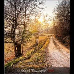 Sunny day of the winter - Cuneo - Italy - NON HDR (Margall photography) Tags: park street autumn winter parco sun colors bike canon river photography perspective sigma marco non cuneo hdr 30d ligh stura galletto margall fluviale