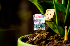 educational reading (ronny..) Tags: sun plant magazine photography reading amazon 365 underneath popular odc danbo amazoncojp project365 revoltech threesixtyfive danboard ourdailychallenge project36612011 2011yip 3652011 2011inphotos threehunderdsixtyfive
