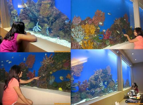 Hotel H2O Aquaroom