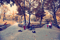 Central Park - New York City (naldomundim) Tags: park new york city nyc newyorkcity usa america canon centralpark central wide midtown eua l 5d canon5d 16mm naldo mark2 1635mm mundim naldomundim 5dmark2 gettyimagesbrasil