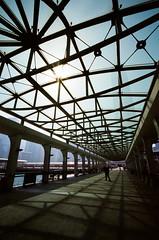 Pier #2 (- Dolce Vita -) Tags: leica film fuji voigtlander m6 15mm heliar superwideheliar pro400h superwideheliarii