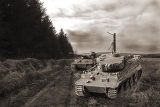 P48 Tiger Ib Schwere Panzer Abteilung 502 - sPzAbt. 502