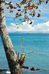 ZC Golf Club and Beach Resort (abet95) Tags: zamboanga