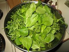 Spinach and Arugula