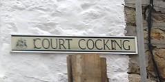 Court Cocking