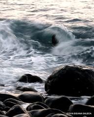 Mar, Olas y efecto seda (Aysha Bibiana Balboa) Tags: mar playa olas marinas espumademar efectoseda orilladelmar mygearandme mygearandmepremium olasenlaorilla fotosefectosedaenelmar
