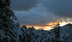 The Sun Decends (JEHIES) Tags: trees sunset sky snow mountains clouds canon dark stars mtbaldy t1i