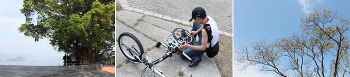 cu-bike3