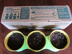Seeds Plus Box