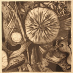 "<b>Shoreline 2</b><br/> Paula Berg Owen (LC '70) (charcoal on paper, 2010)<a href=""http://farm6.static.flickr.com/5299/5493001390_49536b70a8_o.jpg"" title=""High res"">∝</a>"