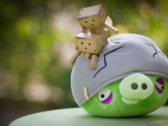 Are you sure this helmet pig won't hurt us? (kktp_) Tags: toy toys bokeh olympus stuff danbo rovio angrybirds epl1 voigtlandernokton50mmf11 helmetpig