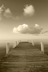 Puffy white clouds and pier in Providenciales,Turks and Caicos Islands in sepia tone (jackie weisberg) Tags: beautiful nature jackieweisberg turksandcaicosislands westindies britishoverseasterritory tropical tropicalislands providenciales provo tourism touristattraction tourists travel vacation resort resorts beach beaches coralreefs diving touristdestination turquoisewater northatlanticocean sea oceans water sevenstars view hotel hotels sky clouds gracebay puffyclouds whiteclouds bluesky skies pier piers sepia sepiatone provedenciales turksandcaicos flickeraward nikonflickraward flickawards5 blueribbonwinner platinumheartaward tripleniceshot doublyniceshot
