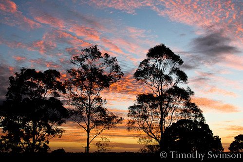 Vibrant Sunset 2