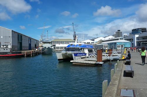 East-West Wellington Harbour ferry