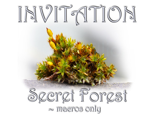 Secret Forest Group Invitation by christabel's artworks, on Flickr. © Chris Elliott.