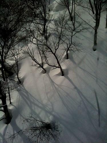 2011/03/17@sapporo kokusai