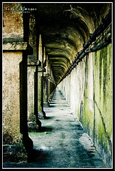 Gritty Tunnel (Sam_C_Moore) Tags: green dark concrete moss pillar perspective tunnel cable cracks