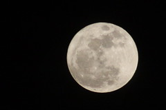 Full Moon Closest to Earth by Cobra_11
