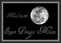 Super Perigee Moon (DOLINICK) Tags: moon white black night march super luna nasa full 19 lunar apogee 2011 perigee