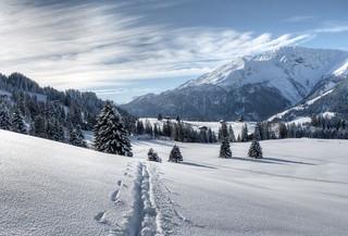 Goodbye Winter!