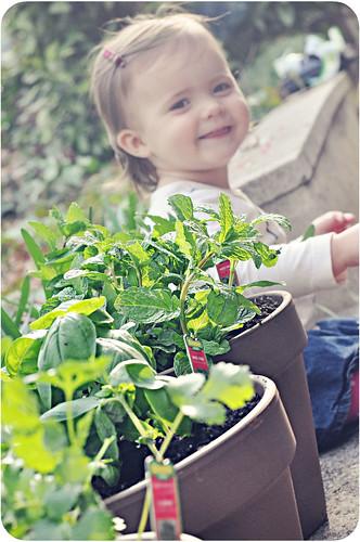 planting07