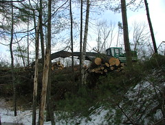 DSCF4715 (M.Bouzakine) Tags: forestry logging valmet skidder timberpro knuckleboomloader 445exl deere648g