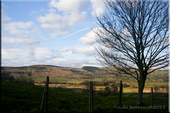 CASTLETON COUNTRYSIDE (vicki127.) Tags: trees grass fence countryside canon300d peakdistrict bluesky hills beautifulscenery castleton fluffyclouds digitalcameraclub absolutelyperfect youmademyday platinumphoto flickraward march2011 placesyouvisit artofimages mygearandme adobephotoshopcs5 ringofexcellence vickiburrows vicki127