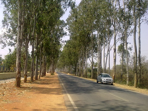Maruti Swift near Nandi Hills