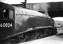 Perth Station. (Kingfisher 24) Tags: bridge scotland pacific platform oldschool perth kingfisher a4 wagons steamlocomotive perthstation halina35x 60024